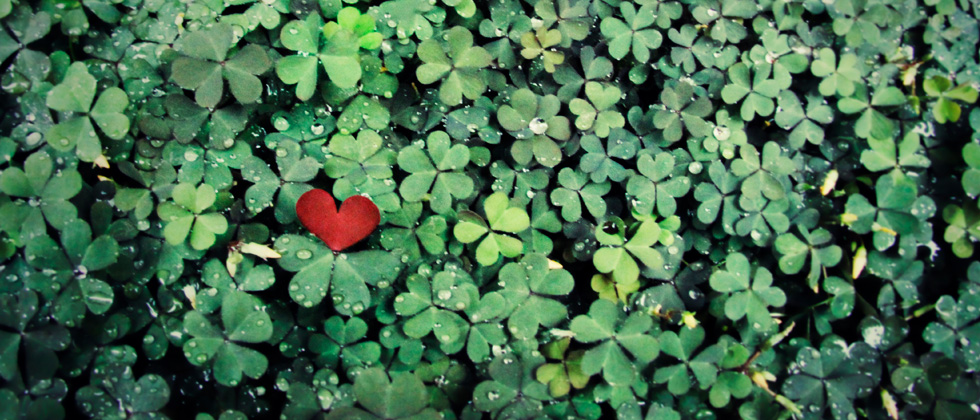 A cutout of a heart laying in a field of clovers