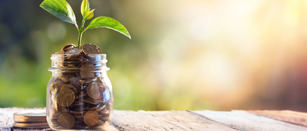 A mason jar filled with coins and a plant sprouting from the top