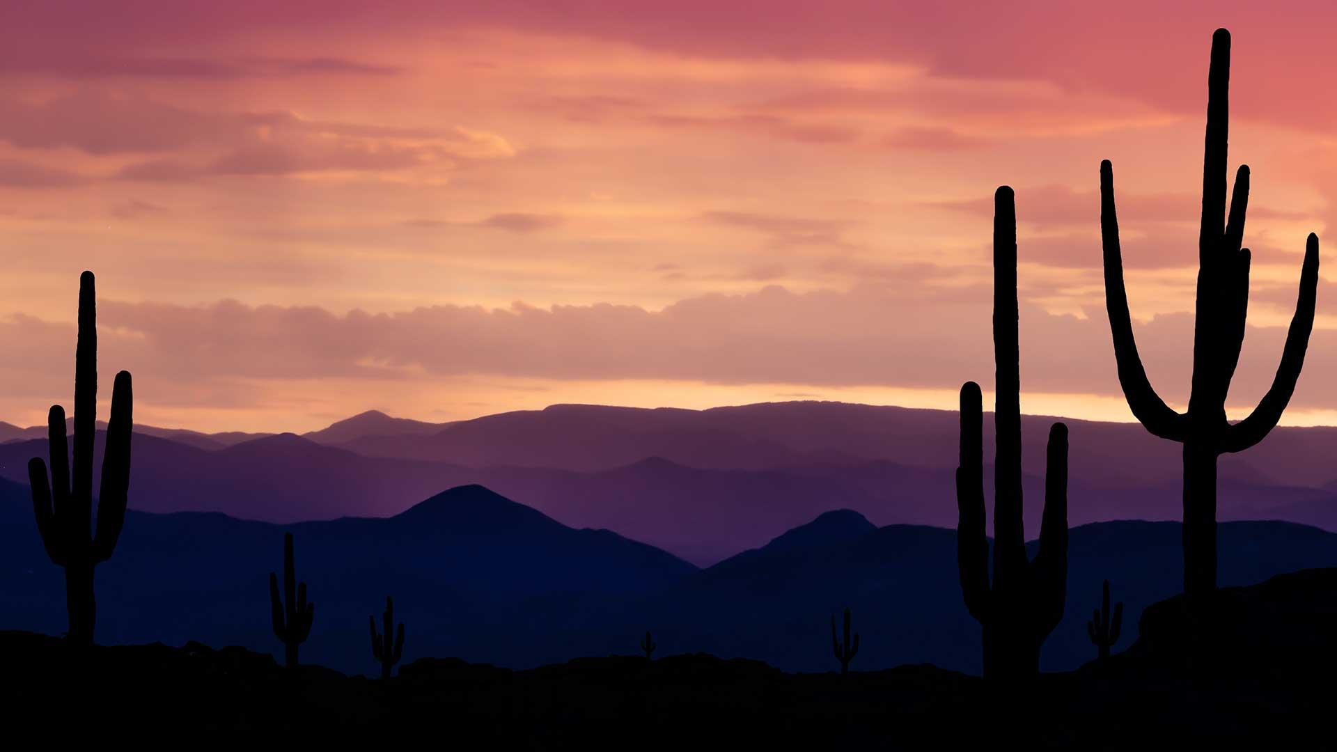 Panorama to illustrate dating in Arizona